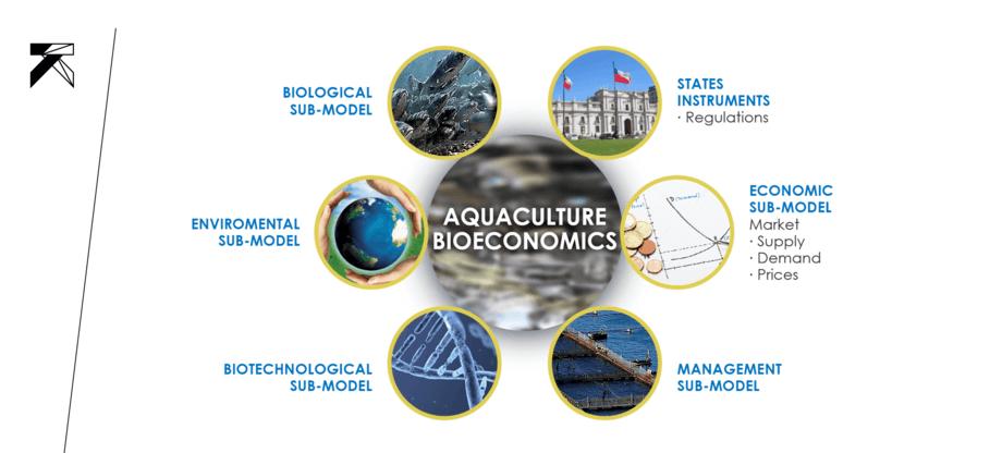 Figura 1: Interrelación de los diferentes elementos o submodelos que componen la actividad acuícola y que son parte del análisis bio-económico (enfoque sistémico y holístico)