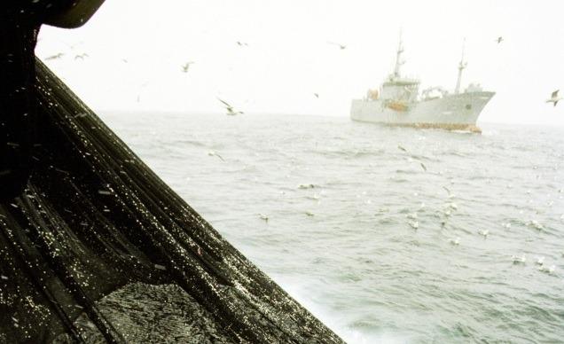 Foto: Sømatrådet
