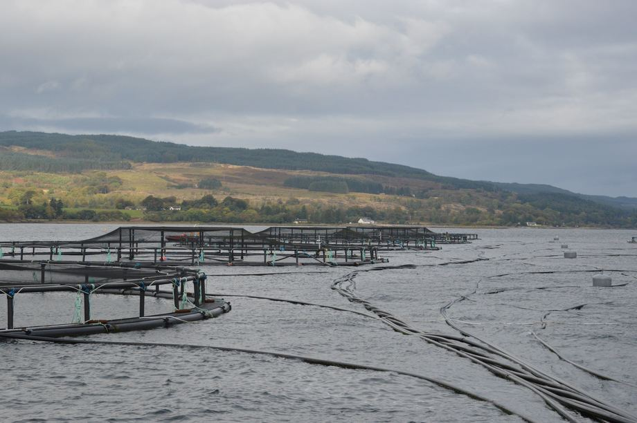 Dette anlegget til Scottish Salmon Companys like ved Stirling og flere andre kommer nå på færøyske hender. Foto: Øyvind Sjøthun Røen.
