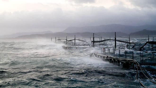 Storm ved visningsanlegg i Hardanger.