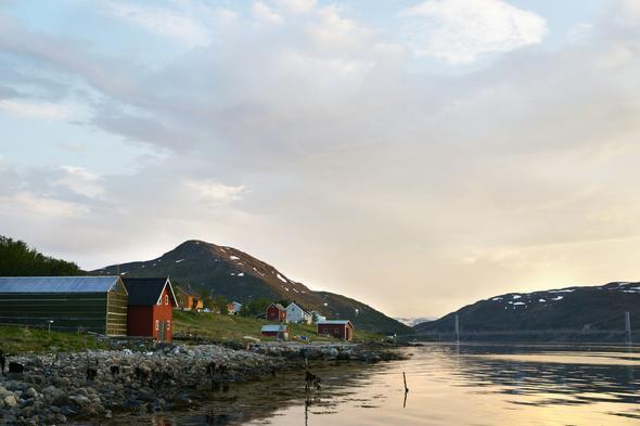 Repparfjorden, natur