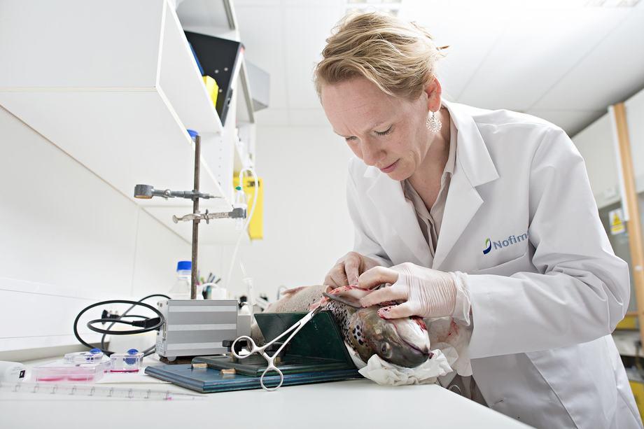 Tone-Kari Knutsdatter Østbye på labben. Leverprøver av laks