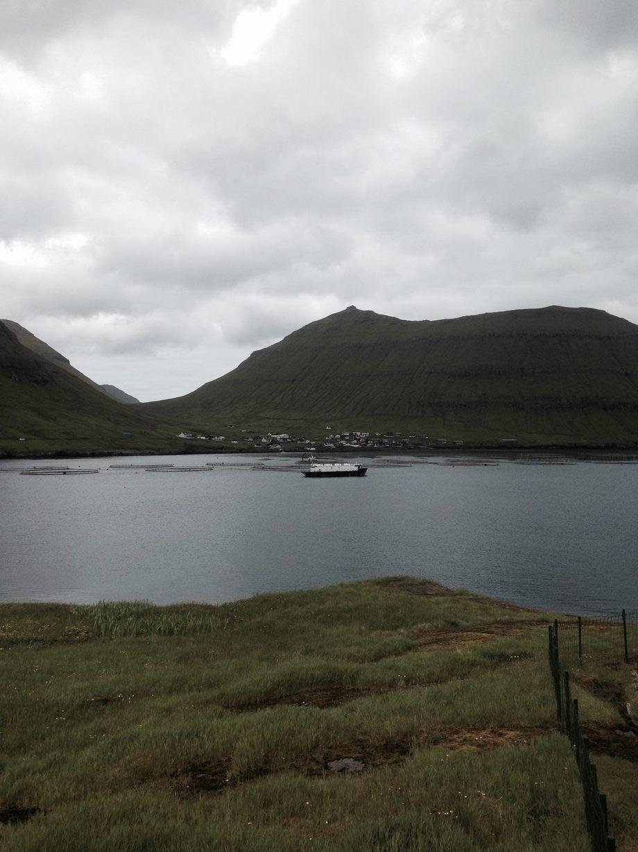 Marine Harvest lokalitet på Færøyene. Foto: Gudny Vang