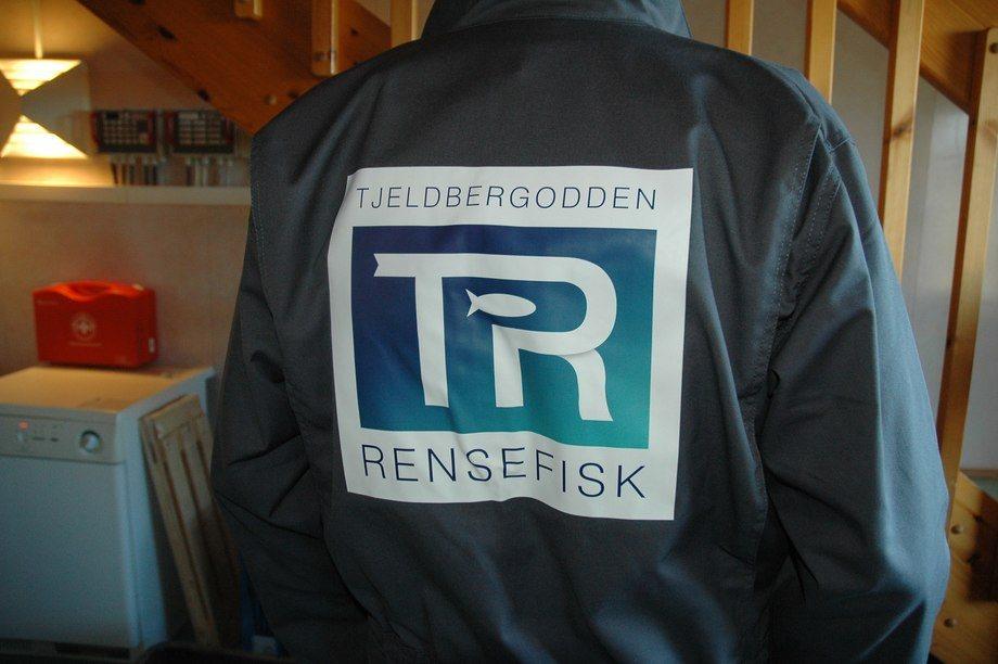 Tjeldbergodden Rensefisk har stort fokus på å unngå sykdom i sin rognkjeksproduksjon. Foto: Tjeldbergodden Rensefisk.