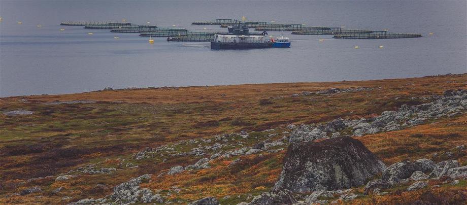 Foto: Finnmark Fylkeskommune