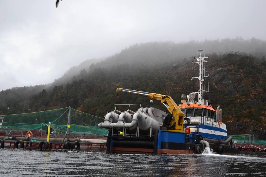 Thermolicer innstalert på båt. Foto: Linn Therese Skår Hosteland