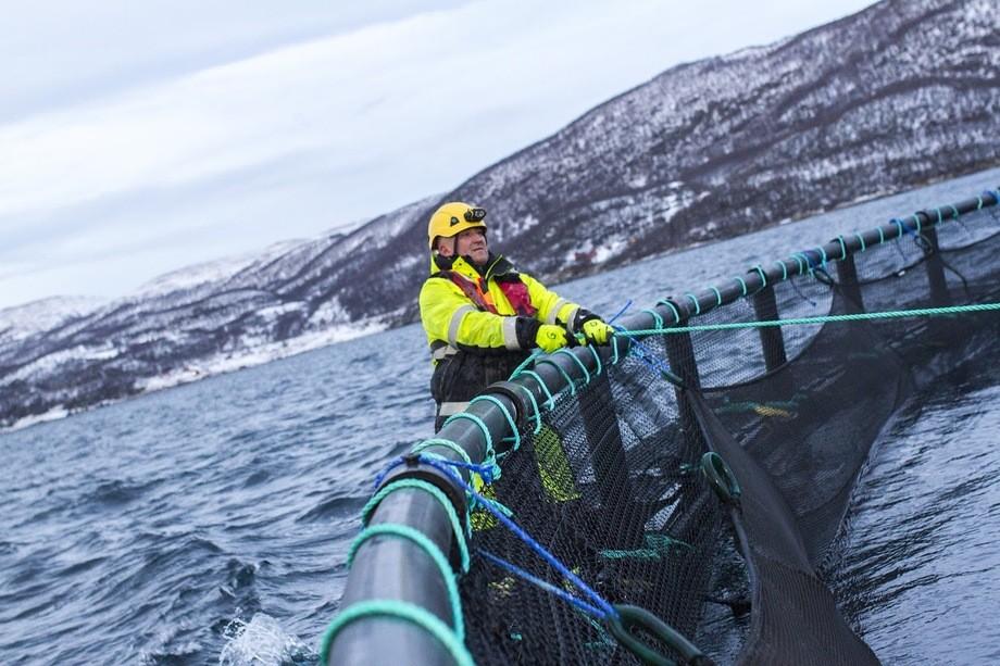 Foto: Grieg Seafood Finnmark