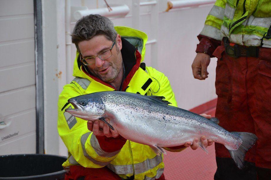 Michael Niesar, daglig leder i Sulefisk. Foto: Linn Therese Skår Hosteland/Kyst.no