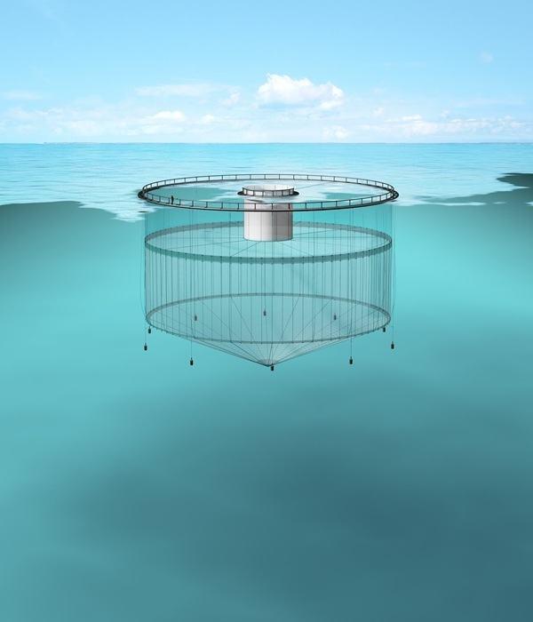 Illustrasjonsfoto av snorkelmerd/tubenot fra Egersund Group.