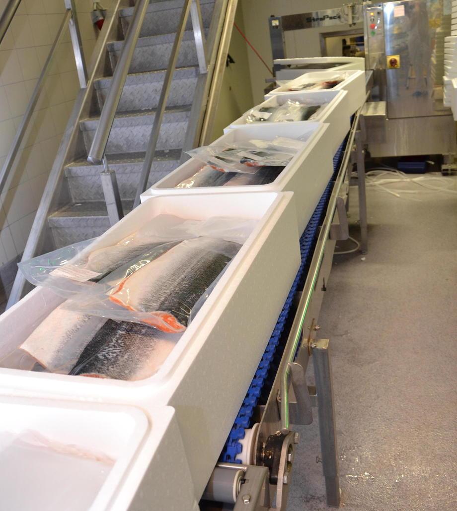 Aldri før har det blitt eksportert sjømat fra Norge i januar til så stor verdi. Arkivfoto. Linn Therese Hosteland
