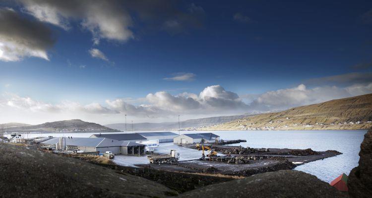 Bakkafrost made an operational EBIT of £30.7m in Q1. Photo: Bakkafrost.