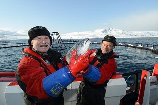 Røktere i Finnmark. Foto: NRS