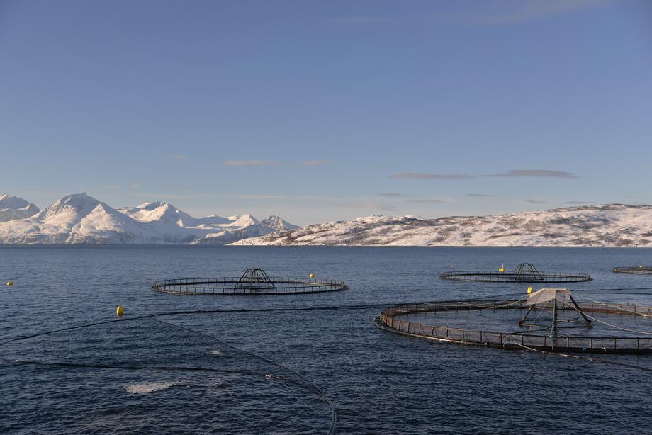 Illustrasjonsfoto: Oppdrettsanlegg i Troms.