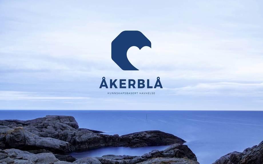 Selskapets logo. Foto: Åkerblå.