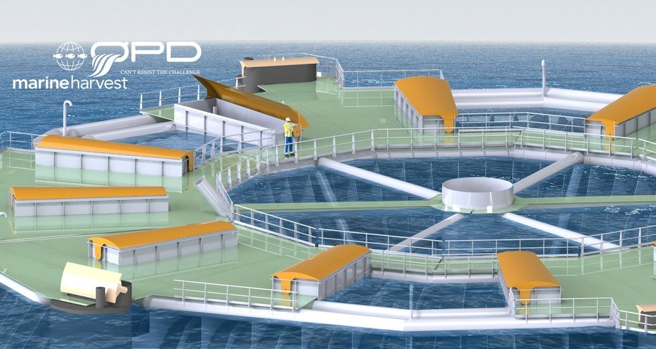 «Marine Donut» er designet med tanke på norske fjorder, men kan også plasseres på eksponerte lokasjoner. Dette gir muligheter til å ta i bruk areal som per i dag ikke er i bruk til havbruksformål. Foto: ØDP.