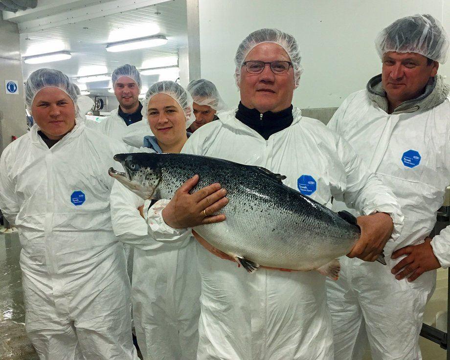 Daglig leder i Langøylaks AS, Karsten Inge Møgster med et prakteksemplar. Foto: Coast Seafood