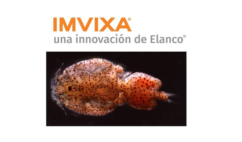 Nytt lusemiddel lansert i Chile fra Elanco.