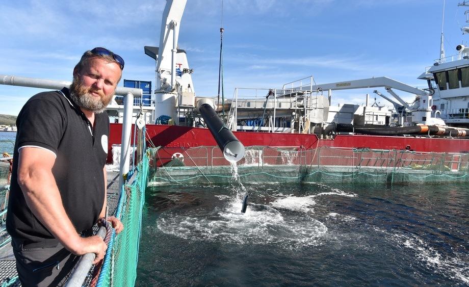 Gudbrand Sørheim er dagleg leiar i Oppdretternes Miljøsevice AS som i dag har mottatt Fiskeridirektoratets Miljøpris. Arkivfoto: Foto: Tom Lysø.