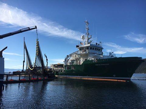 Grieg Seafood Finnmark satser blant annet på Thermolicer under sine avlusinger i kampen mot lusen. Foto: GSF