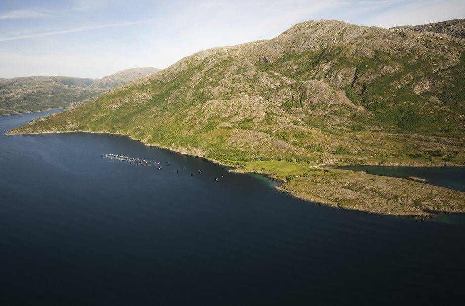 Nova Sea har oppdaget rømming ved lokaliteten Tjøtta.