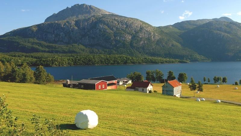 Nordisk ministerråd lanserer samarbeidsprogrammet til Ministerrådet for fiskeri, havbruk, jordbruk, mat og skogbruk for 2017-2020. Foto: Colourbox