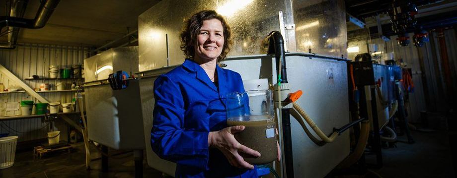 Turid Synnøve Aas and colleagues have analysed sludge from three commercial hatcheries through an entire production year, resulting in precise knowledge about the content of the sludge. Foto: Terje Aamodt © Nofima.