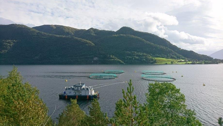 Tombre Fjordfarm er en av to selskaper som har fått opphevet det opprinnelige vedtaket fra Mattilsynet. Foto: Tombre Fiskeanlegg.