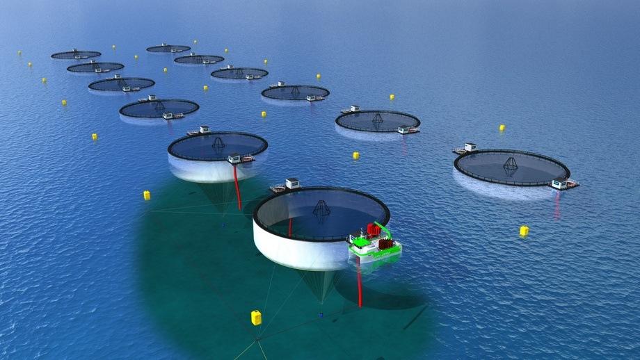 OptiFarm er et semi-lukket anlegg som består av tre hovedkomponenter. Fiskeridirektoratet mener at flere av komponentene ikke er innovative nok. Foto: NOFI.