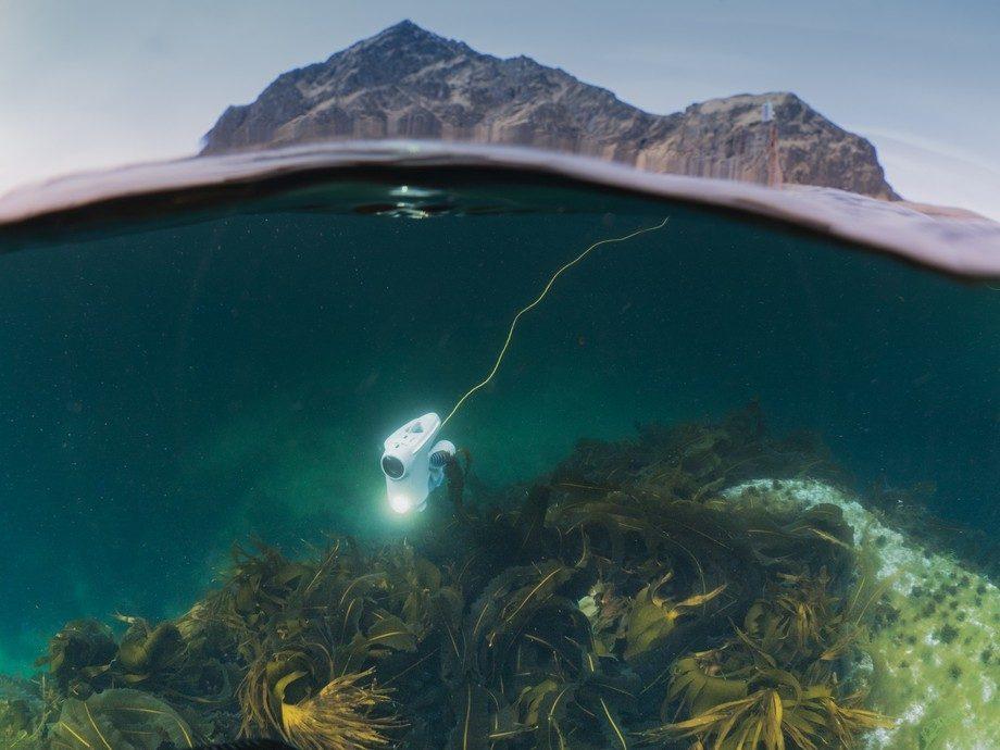 Undervannsdronen i bruk på grunst vann. Foto: Blueye Robotics.