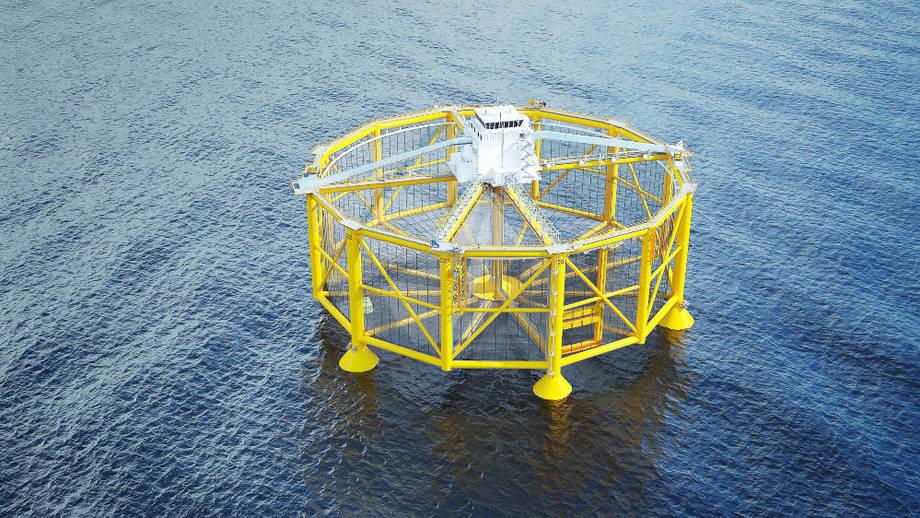 Salmars offshore havmerd. Foto: Salmar.