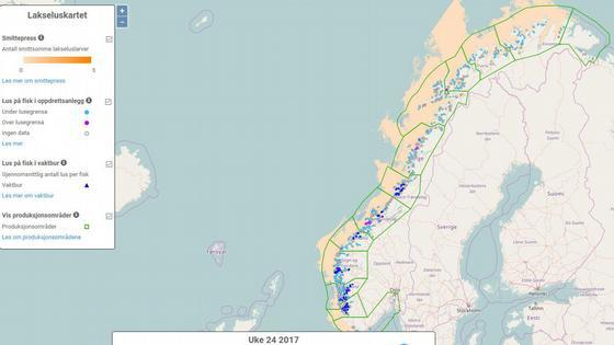 På Lakseluskartet kan du mellom anna sjå kvar dei smittsame lakseluslarvane blir transportert med straumen (oransje felt). Om du går inn på sjølve kartet kan du zoome inn for å sjå detaljar i eit bestemt område. Foto: Havforskningsinstituttet.