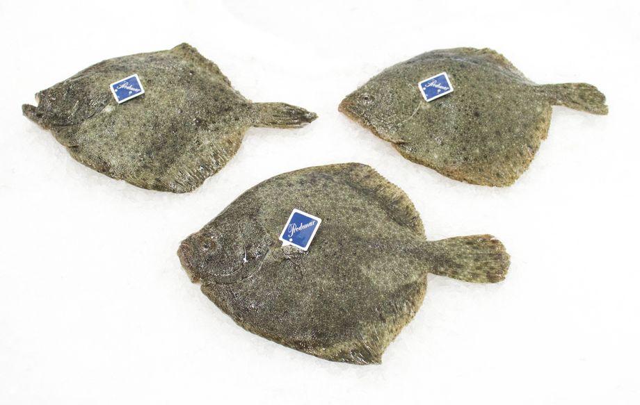 Stolt Sea Farm produserer bl.a. piggvar av varemerket Prodemar.