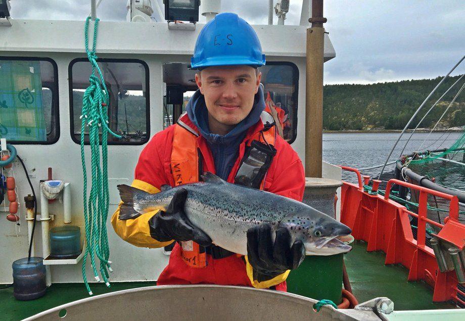 Kristoffer Berglund Andreassen er fiskehelsebiolog og leder av Tekna Havbruk og Fiskehelse. Foto: Privat.