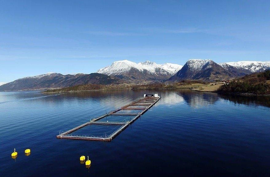 Lokaliteten Hågårdsneset på Snilstveitøy tilhøyrande Eide Fjordbruk, er i dag godkjent for ein mtb på 2340, noko oppdrettselskapet har søkt om at skal aukast til 3600. Foto: Eide Fjordbruk.