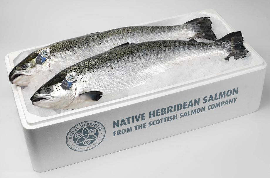 Bakkafrost now owns all but 4.4% of SSC, which produces successful brands such as Native Hebridean Salmon. Photo: SSC.