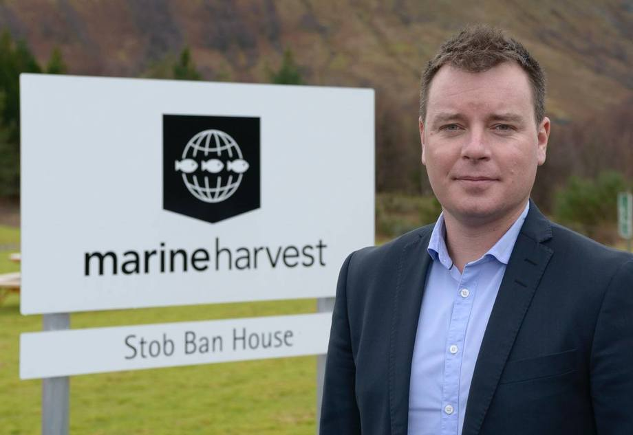 Ben Hadfield, MD of Marine Harvest Scotland, will co-chair the working group. Image: Marine Harvest.