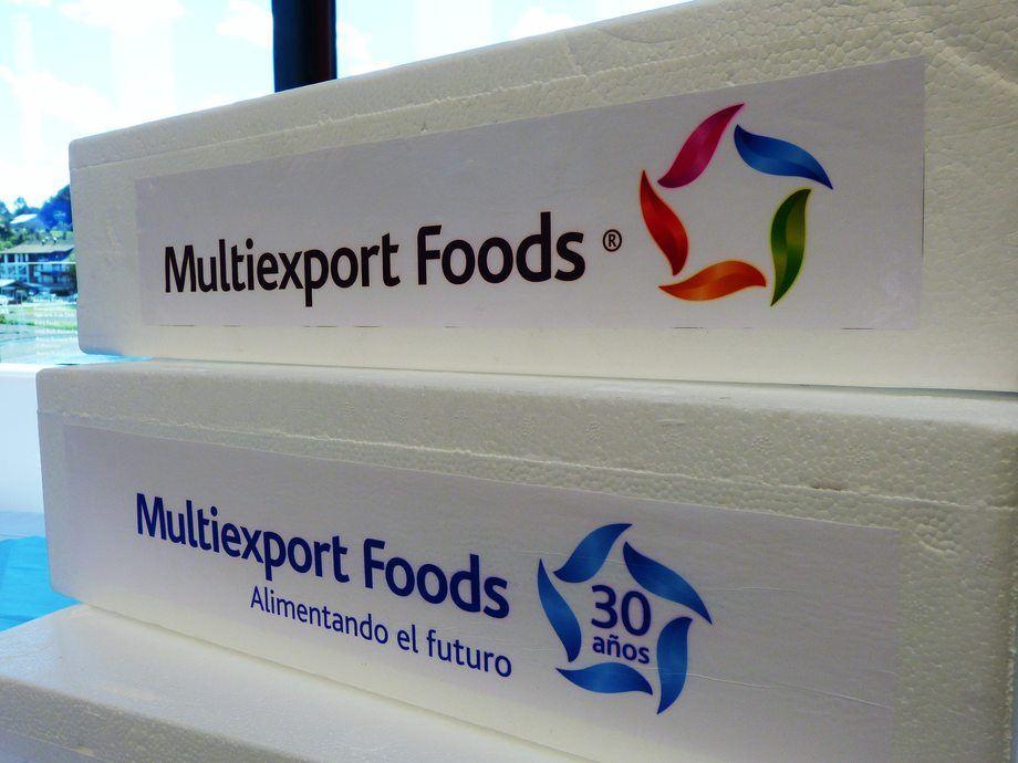 El volumen cosechado por la empresa durante 2019 fue de 95.476 toneladas WFE de salmónidos. Foto: Multiexport Foods.