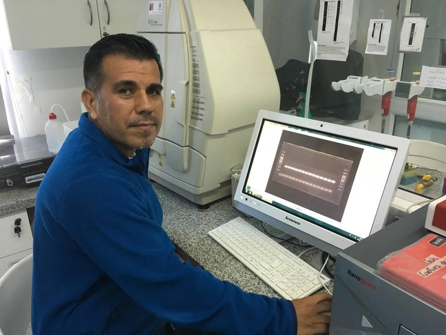 Dr. Rubén Avendaño, investigador principal del Incar y profesor titular de la Universidad Andrés Bello. Foto: Archivo Salmonexpert.