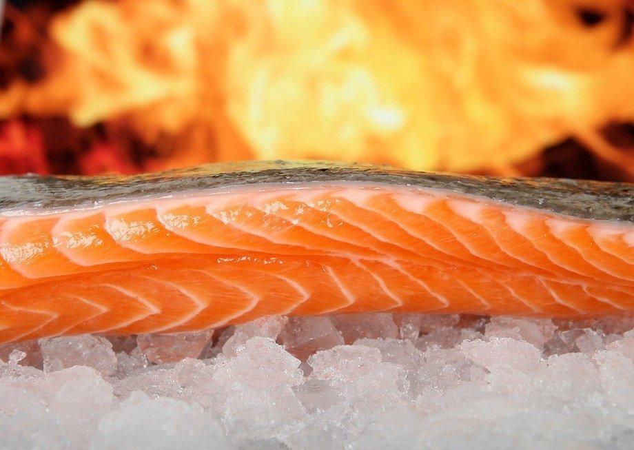 Salmonchile mostrará el ciclo productivo del salmón a invitados de ...