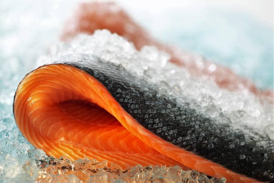 Foro referencial de salmón. Fuente: Pixabay.