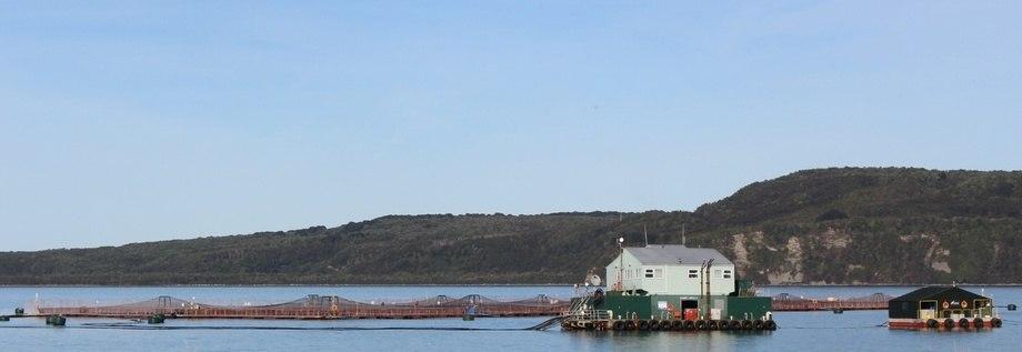 Imagen referencial de centro de cultivo en Magallanes. Foto: Sernapesca.