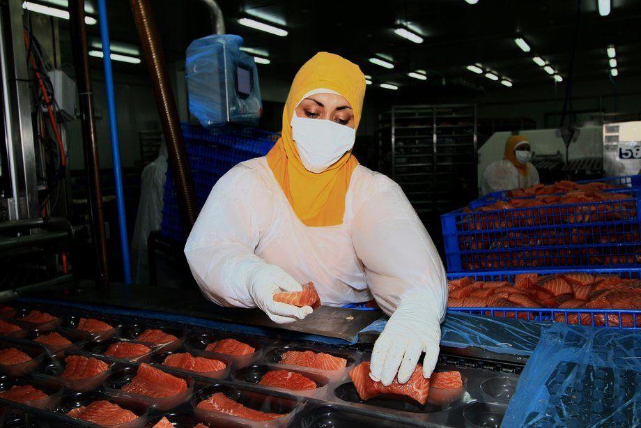 La inocuidad alimentaria será abordada en eventos de la FAO desde diferentes ámbitos importantes para la salmonicultura. Foto: Archivo Salmonexpert.