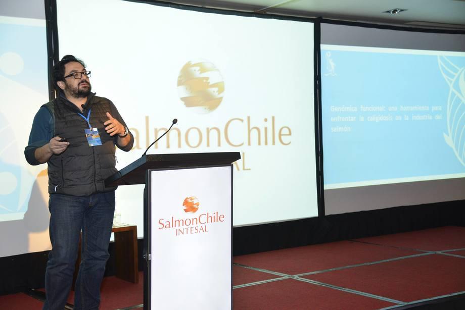 Dr. Cristián Gallardo, biólogo marino, investigador del Incar y académico de la Universidad de Concepción. Foto: Archivo Salmonexpert.