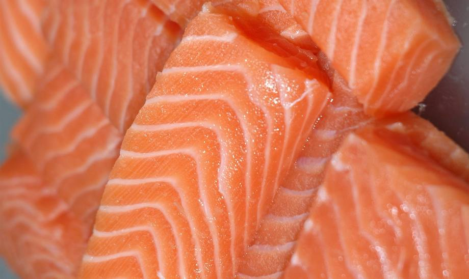 Imagen referencial de filete de salmón. Foto: Archivo Salmonexpert.