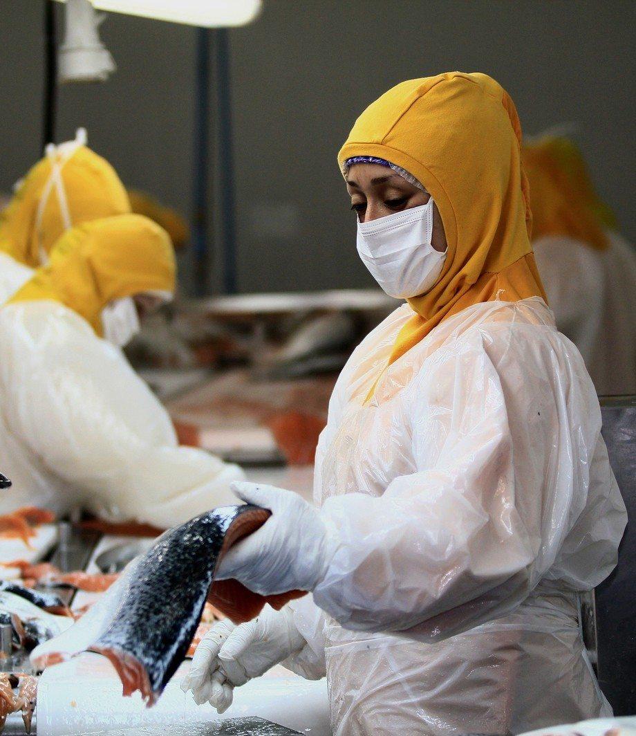 Imagen referencial de planta de proceso. Foto: Salmonchile.