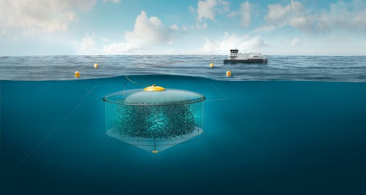 AKVA's Atlantis Subsea Farming project is now in a test phase, with fish in the pen. Illustration: Atlantis Subsea Farming.