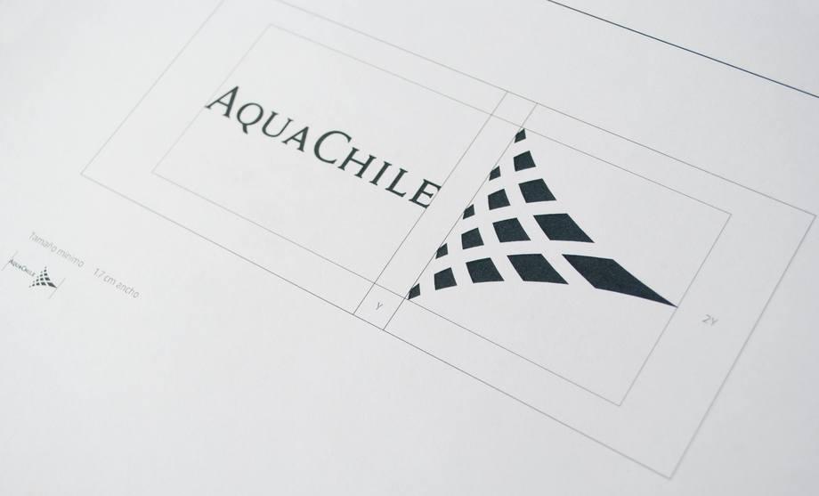 Imagen referencial de AquaChile. Foto: AquaChile.