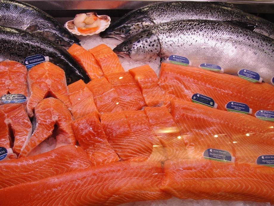 Imagen referencial de salmón. Foto: FAO.