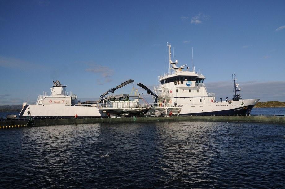 Ronia Atlantic, wellboat de Solvtrans. Foto: Solvtrans.