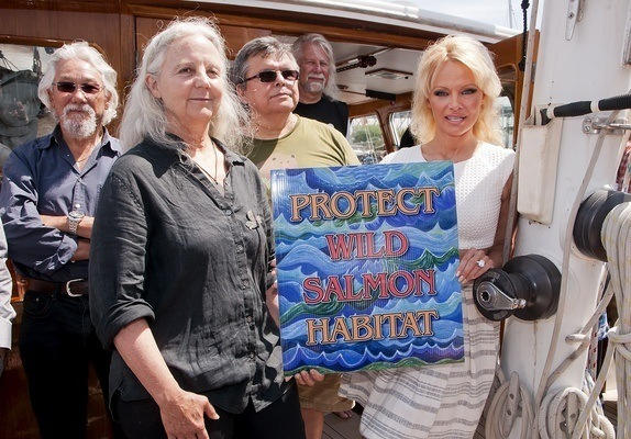Alexandra Morton enlisted the help of former Baywatch star Pamela Anderson to kick-start her voyage around BC farms this summer - a stunt that is likely to land the former in court.